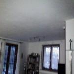 FLIR0136